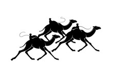 Black Silhouette Graphic Of Camels During Camel Races With A Robot Rider On The Humps. Three Elegant Running Dromedary, Vector Illustration, Isolated On Background.