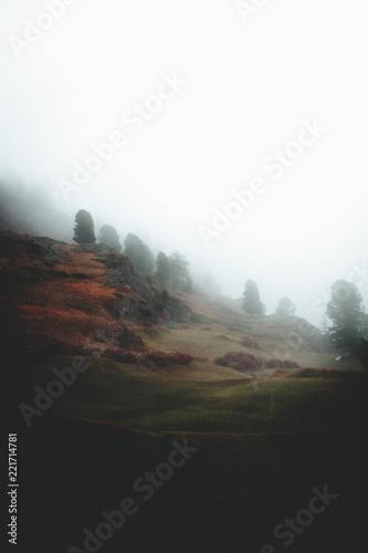 Tuinposter Grijze traf. Zermatt Landscapes shot by Joshua Fuller