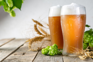 Fototapeta Beer and ingredients hops, wheat, barley on wood background, copy space