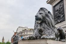 London, UK - July 10, 2014 - L...