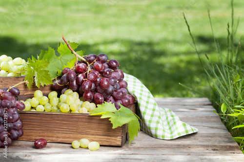 Fotografiet  White and red grape on garden table