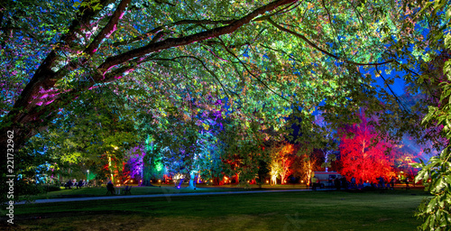 last night in the enchanted forest - the magic park Canvas Print