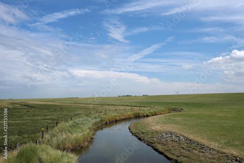 Braunes Gras im Deichvorland an der Nordseeküste im regenarmen heißen Sommer 2018 - Stockfoto