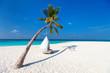 Beautiful tropical beach in Maldives