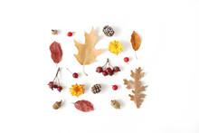 Autumn Styled Botanical Arrang...