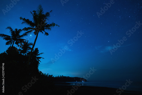 Fotobehang Nacht Scenic night sky with a lot of stars and palm tree