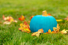Teal Pumpkin Outside. Symbol Of Alternative Non-food Treats For Kids With Food Allergy. The Concept Of Health For Children In The Halloween Season. Halloween Allergy Friendly Trick Or Trinket