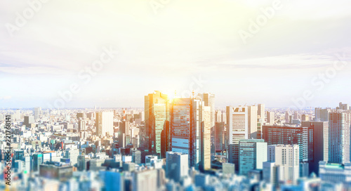 Fotografia  Business and culture concept - panoramic modern city skyline bird eye aerial view under dramatic blue sky in Tokyo, Japan