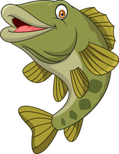 Cartoon Bass Fish Isolated On White Background