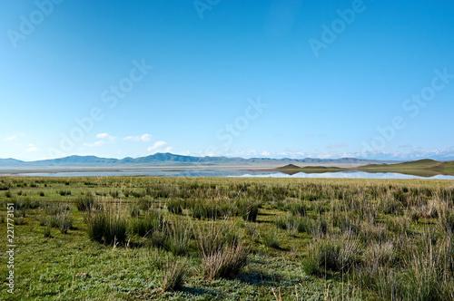In de dag Blauw Tuzkol lake (lake of salt in Kazakh language), Kazakhstan