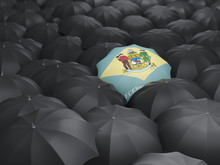 Delaware State Flag On Umbrella. United States Local Flags