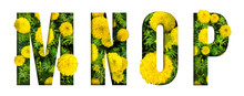 Alphabet M, N, O, P Made From Marigold Flower Font Isolated On White Background. Beautiful Character Concept.