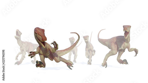 Fototapeta velociraptor pack, hunting theropod dinosaurs coming out of the mist, 3d illustr