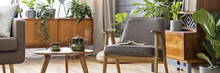 Open Book Placed On Grey Armchair Standing Next To Wooden Coffee Table With Tea Set In Bright Sitting Room Interior With Many Fresh Plants