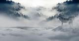 zima śnieg - 221831324