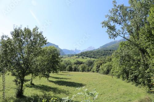 Foto op Canvas Pistache Valle Asturiano