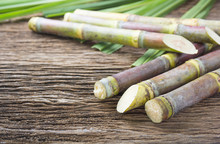 Close Up Concept Sugarcane On Wood Background.