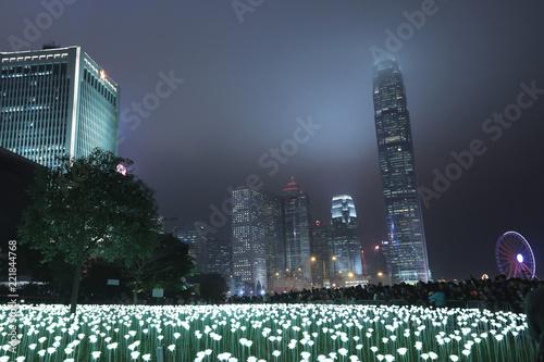 Foto  Light LED Rose Garden In Hong Kong