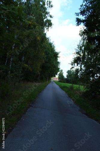 Foto op Plexiglas Weg in bos Wieś