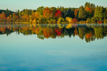 Fall Foliage Reflection In Lake