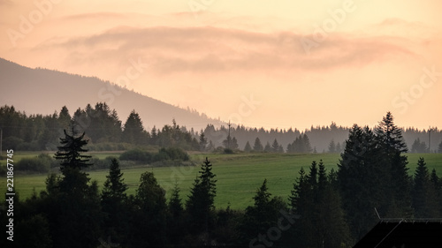 Poster Beige panoramic view of misty forest in western carpathian mountains. Tatra in foggy sunset