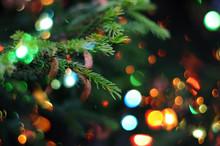 Christmas Holiday Background. Christmas Fir Tree And Bokeh Of Sparkling Lights.
