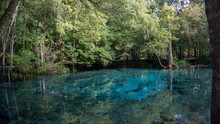 Beautiful View Of The Turquoise Crystal Clear Waters Of The Lagoon Of Ginnie Springs, Florida. USA