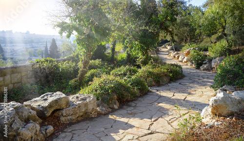 Fotografía View of Jerusalem from the Mount of Olives
