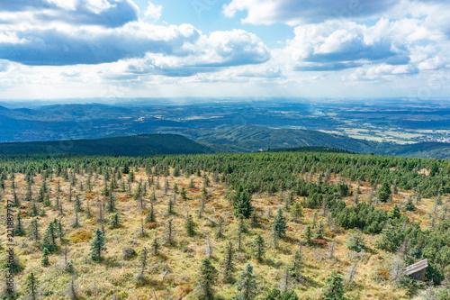 A picturesque view to the top of the mountain in the Czech Republic, a forest in the mountains, dry trees