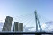tatsumi sakurabashi bridge over shinonome canal tokyo