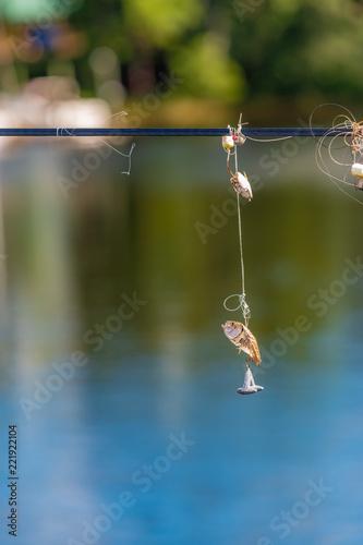 Fotografie, Obraz  fishing line, hook, weight, bait fish, sand flea tangled in power line