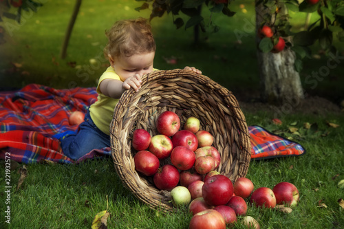 Little boy is playing with apple in a basket