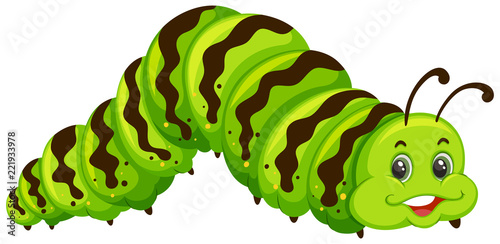 Cuadros en Lienzo Cute green caterpillar cartoon
