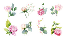 Watercolor Vector Set Of Bouquets Of Green Branches And Flowersset Of Bouquets Of Green Branches And Flowers.