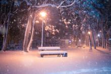 Night Winter Snowfall Landscape. Snowy Alley Of City Illuminated Park