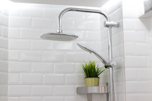 Close-Up Shower And Plant In Bathroom , On White Wall Backgrounds