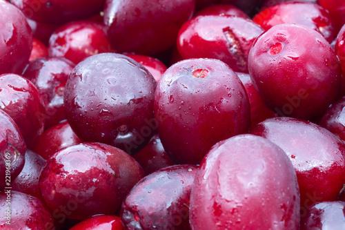 Cornus mas (Cornelian cherry) berries Tapéta, Fotótapéta