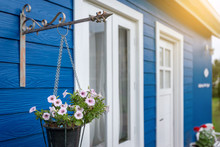 Anemone White And Pink Flowers In A Flower Pot Hanging In Front Of A Blue House With White Windows And White Doors.