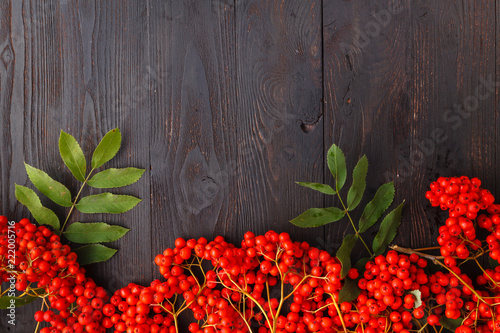 Rowan berries, frame on wooden table, fall concept Wallpaper Mural