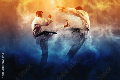 Photo Stands Martial arts Two male karate fighting