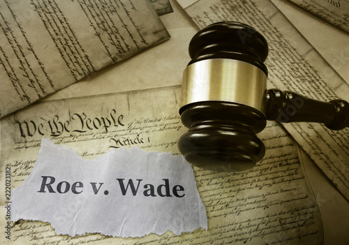 Roe v Wade constitution Wallpaper Mural