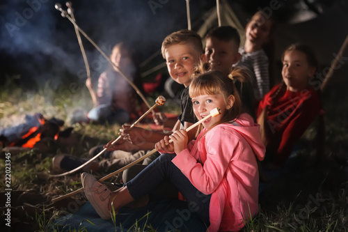 Children with marshmallows near bonfire at night. Summer camp