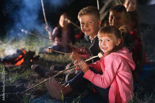 Children with marshmallows near bonfire at night. Summer camp