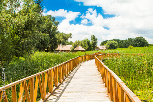 Wooden path in nature park Kopacki rit in Slavonia, Croatia, popular tourist destination and birds reservation
