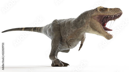 Cuadros en Lienzo 3d rendered medically accurate illustration of a T-rex