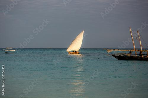 Poster Zanzibar zanzibar, turquoise sea, unique nature, paradise island.