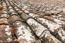 Characteristic Red Tiles In The Old, Medieval, Portuguese Town Of Obidos