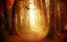 A Tree Lined Pathway Leading Into A Autumn Coloured Forest With Falling Leaves As The Sun Shines Through. Photo Composite.