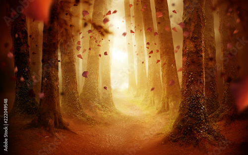 Spoed Foto op Canvas Weg in bos A tree lined pathway leading into a autumn coloured forest with falling leaves as the sun shines through. Photo composite.