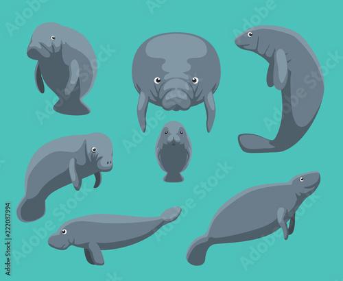 Manatee Seven Poses Set Vector Illustration Wall mural